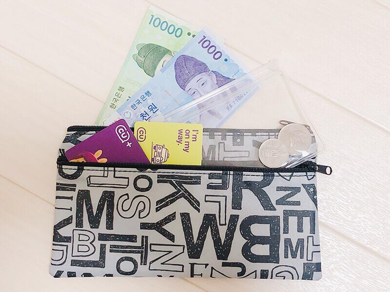 百均の書類ケースを旅行に財布として持って行く